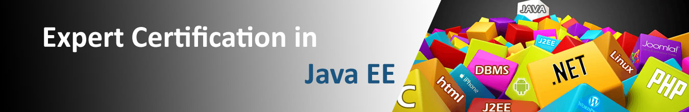 JAVA EE (INDUSTRIAL TRAINING) – SNAP EDUCATION